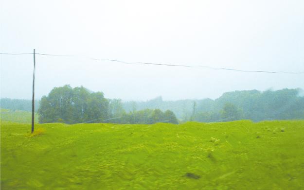 pluie 1
